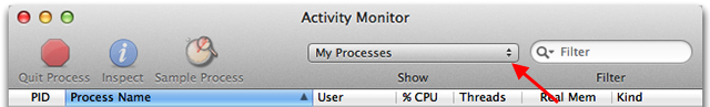 Screencap of Activity Monitor processes