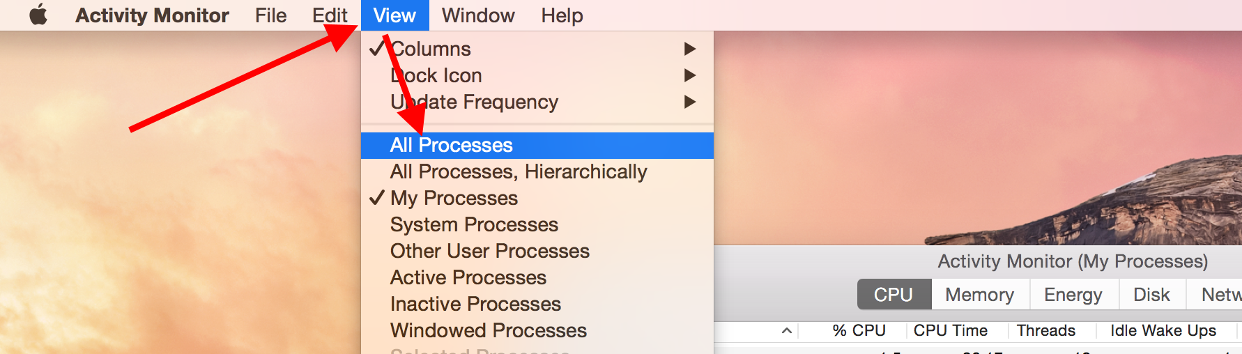 "Screencap showing ""All Processes"""