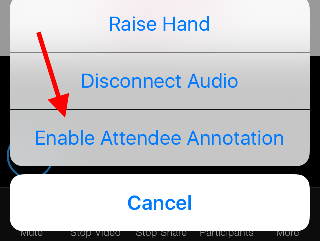 Enable attendee annotation